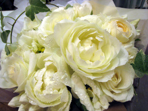 Bouquet_blanc_encore