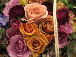 Roses_pour